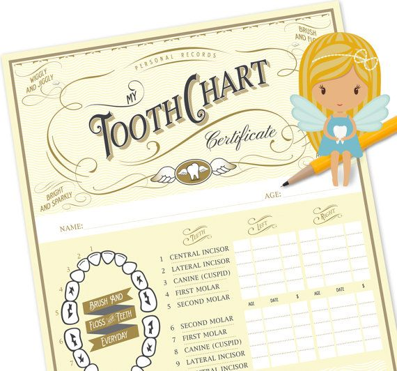 The official Tooth Fairy Chart. Keep Track of when your child losses their first teeth. A beautiful keepsake any child would cherish.  Once the