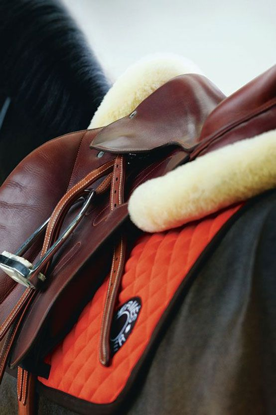 Hermès Cavale saddle unites horse and rider for the perfect feel over fences - Photo: Giampaolo Vimercati
