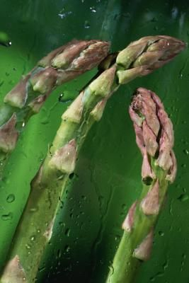 How to Plant Asparagus Crowns