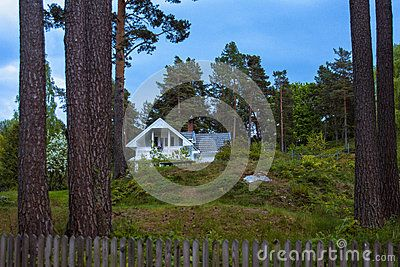 Norwegian landscape with a pine trees and lonely house with a blue sky