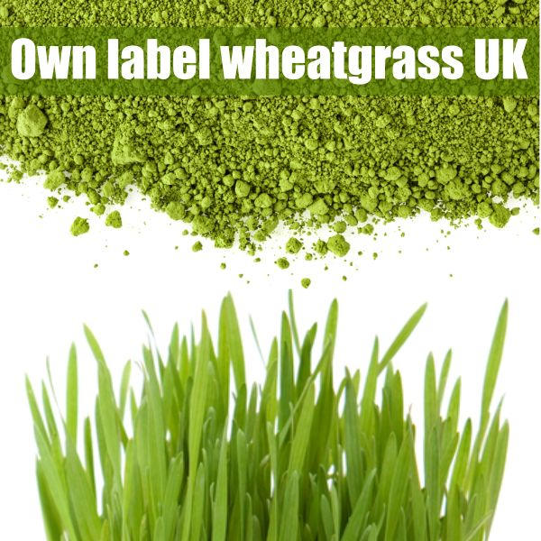 OWN LABEL WHEATGRASS SUPPLEMENTS MANUFACTURED IN THE UK: White label option, no-fee dropshipping and no minimum orders. Click here to find out more about our wheatgrass and other wholesale supplements! #wholesale #wheatgrass