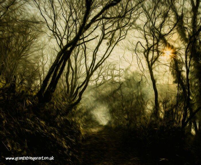 Misty Morning by Grant Stringer
