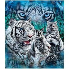 """Find all 12 White Tigers in this fleece. 50"""" x 60"""" in size. Officially licensed product. See our full line of other blankets! Blankets make great gift ideas. Made of 100% Polyester. Shipping Weight: 1"""