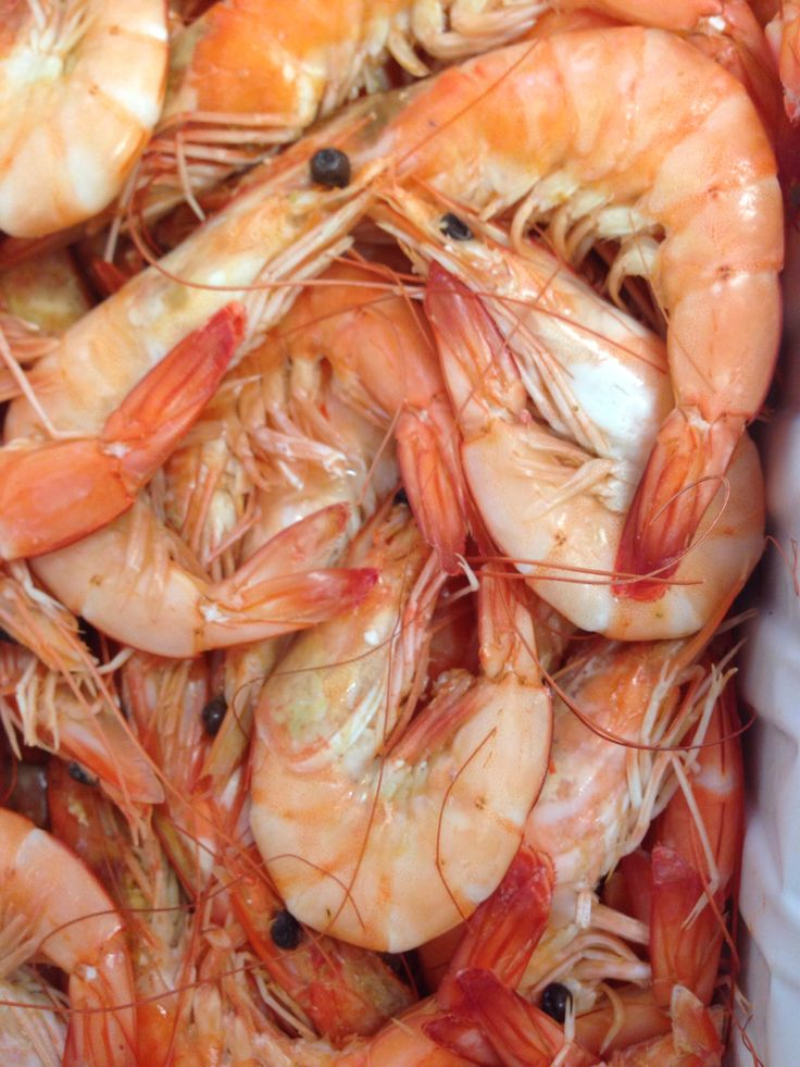 Fresh Crevettes in today