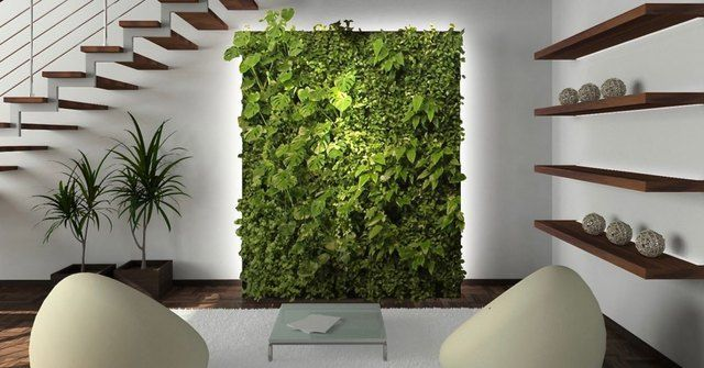 Sustainable Interior Design Trends for Your Home or Office