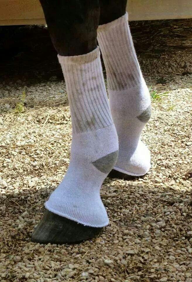 To keep flies off! Good for those nicks that it makes no sense to keep bandaged I suppose