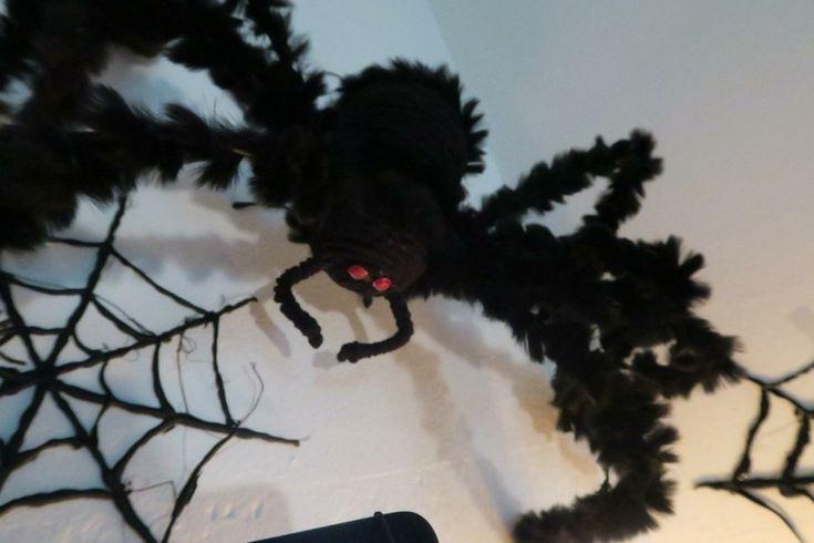Decoracion Halloween Economica ~ M?s de 1000 im?genes sobre Dia de muertos y Halloween en Pinterest