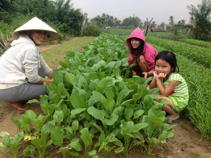 Not just a garden planted, but dreams as well.  #vietnamschooltours #communityservice #vietnam