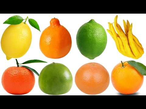 Learn names of Fruits and Vegetables in English Learn English for Kids Children Compilation (Part 7) - YouTube