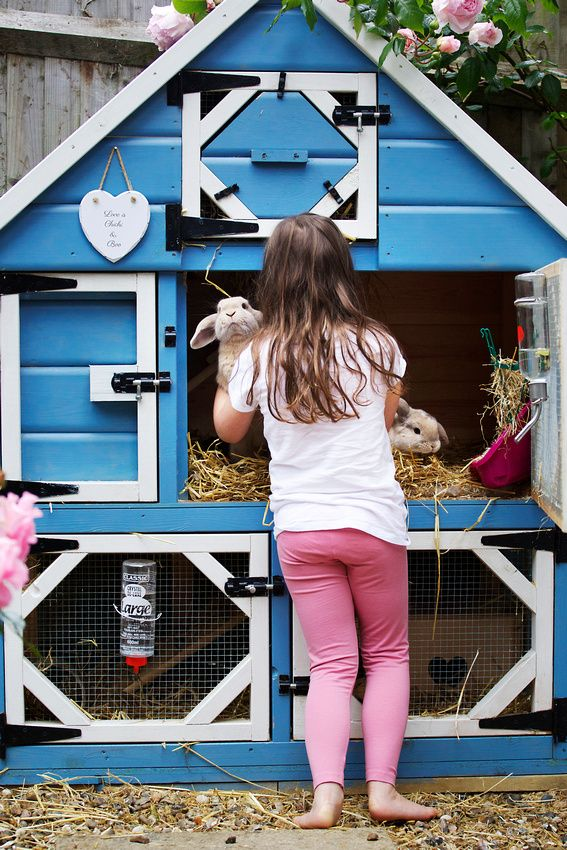 Rabbit hutch- Three levels allows plenty of space for bun bun to move around and multiple doors make for easier cleaning.
