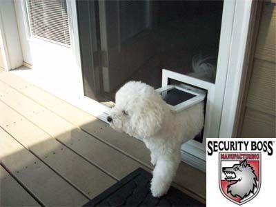 17 best ideas about Pet Screen Door on Pinterest | Dog screen door ...