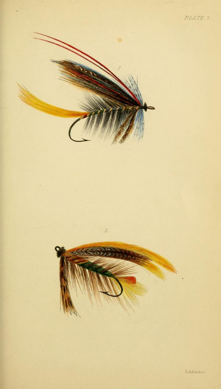 Plate 7: Salmon Flies, Hewett Wheatley - The Rod and Line 1849