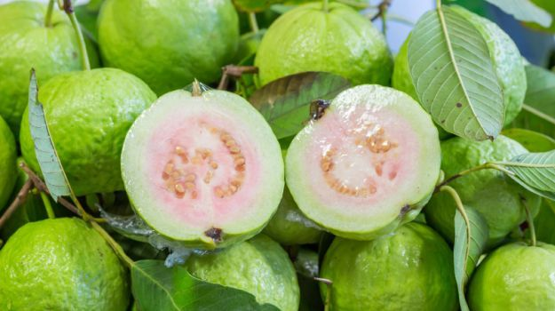 15 Amazing Guava Benefits: Heart Healthy, Weight Loss Friendly and More - NDTV