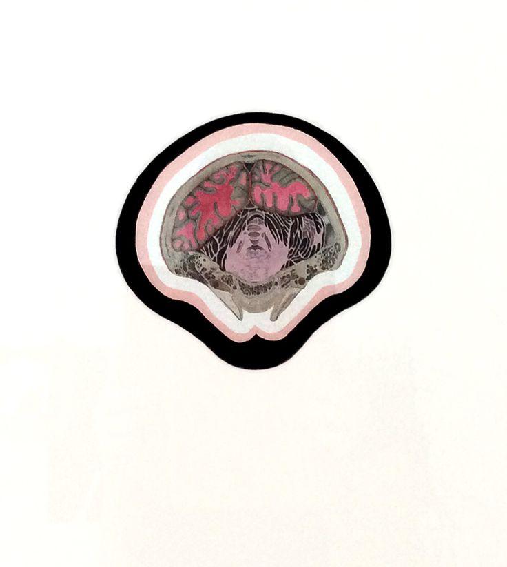 Huesos/Piedras/Flores. Watercolour and print on paper. María García Ibáñez