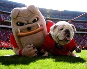 Hairy Dawg and the late Uga VII