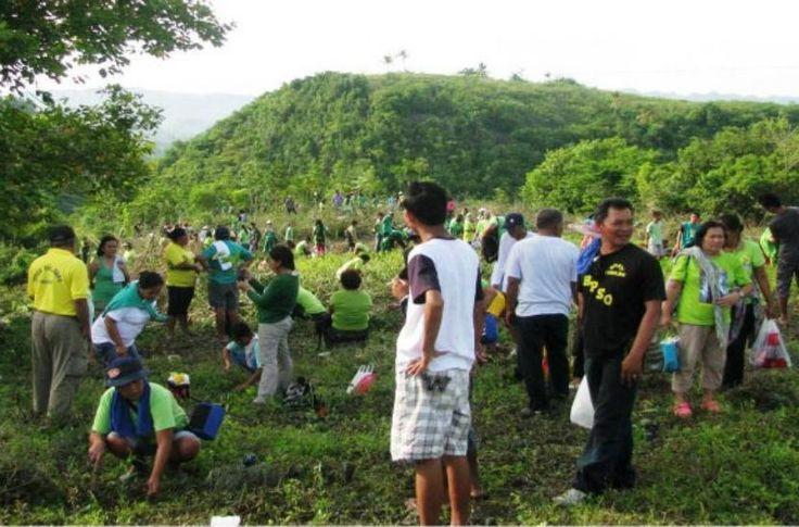 ¡Todo un récord! Plantan en Filipinas 3.2 millones de árboles en una hora - http://www.jardineriaon.com/todo-un-record-plantan-en-filipinas-3-2-millones-de-arboles-en-una-hora.html