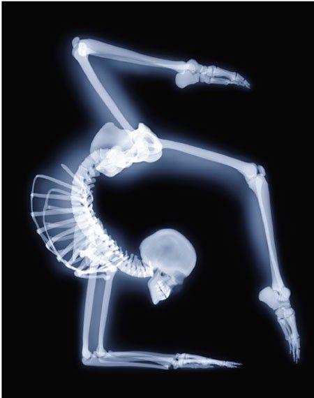 Ballerina Bones in - WHITE