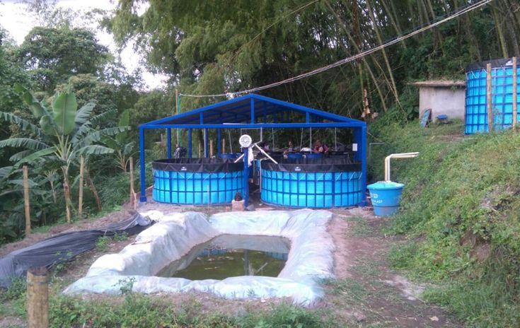 Son dos tanques de 3 metros, un reservorio de 3 metros de diámetro por 2 metros de altura. Adicionalmente cuenta con cuatro camas hidropónicas.