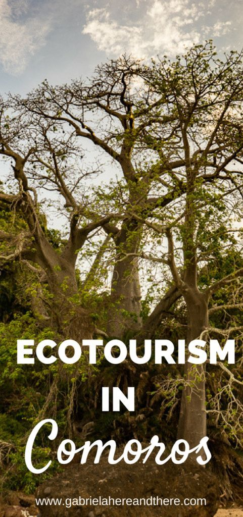 Ecotourism in Moheli, Comoros. A true off the beaten path destination. My crazy adventure taking a boat described as a death trap by Lonely Planet.