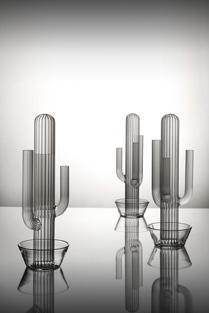 Jiří Pelcl: Cactus, 2007, Křehký
