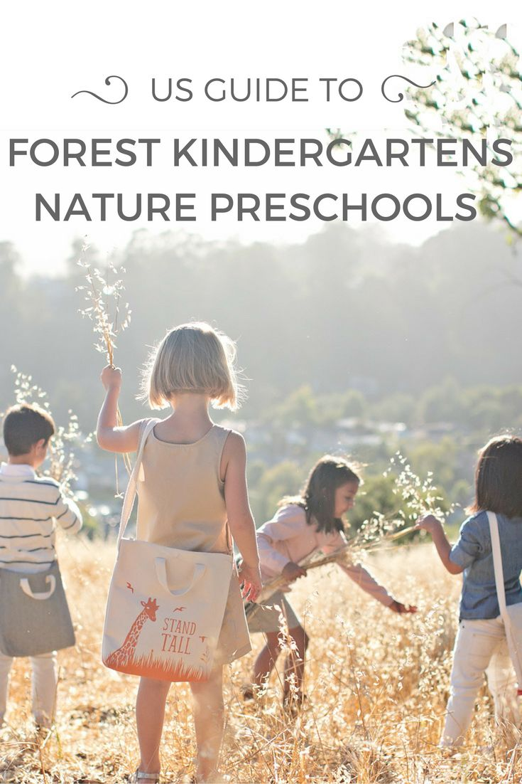 """Forest kindergarten is referred to as a """"classroom"""" without walls where children spent their time learning outdoors. A US Guide to Forest Kindergarten or Nature Preschool across America."""