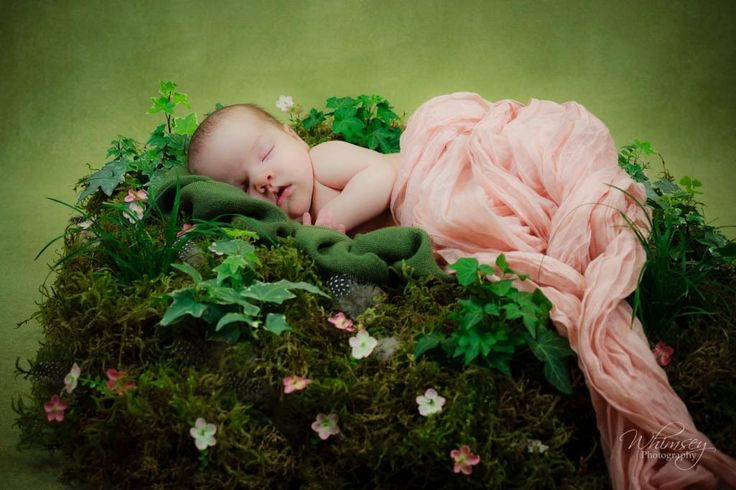 http://www.alifeofwhimsey.com newborn photography. Baby in a mossy nest.