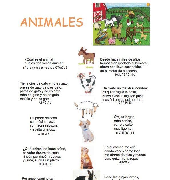 Aqui os dejo unas adivinanzas para trabajar los animales , las hay sencillas y más complicadas escoger la qu...