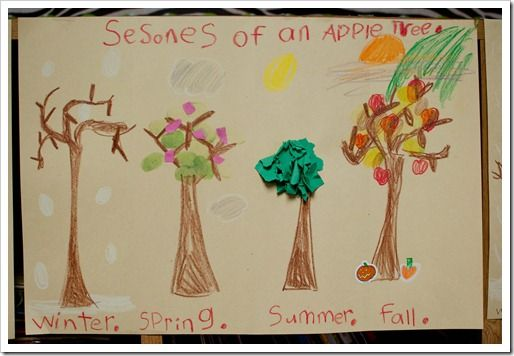 seasons of an apple tree: Seasons Ideas, Children'S Ideas, Apples, Classroom Ideas, Homeschooling Ideas, Seasons Unit Trees, Apple Unit