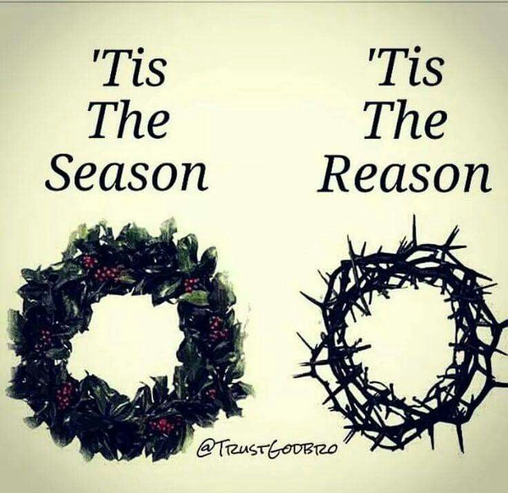 The Holly Wreath for Christmas is symbolic of the crown of thorns that was placed on Jesus' head at his crucifixion. Thank you Lord for your perfect sacrifice!!!