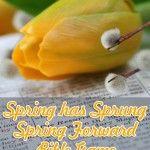 """Spring has Sprung, Spring Forward"" Bible Game"