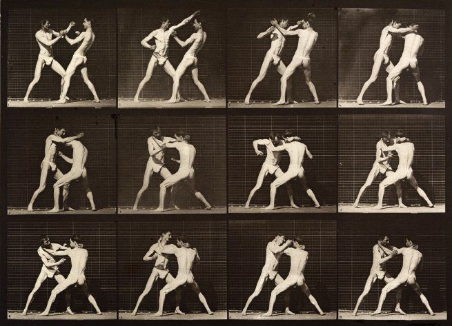 Eadweard Muybridge, Boxing; open-hand. Plate 340, 1887
