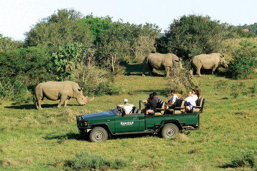 Kariega Game Reserves