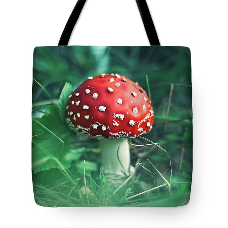 Tote Bag featuring the photograph Red Mushroom by Oksana Ariskina Red fly agaric mushroom in a green grass. Available as mugs, posters, greeting cards, phone cases, throw pillows, framed fine art prints, metal, acrylic or canvas prints, shower curtains, duvet covers with my fine art photography online: www.oksana-ariskina.pixels.com #OksanaAriskina