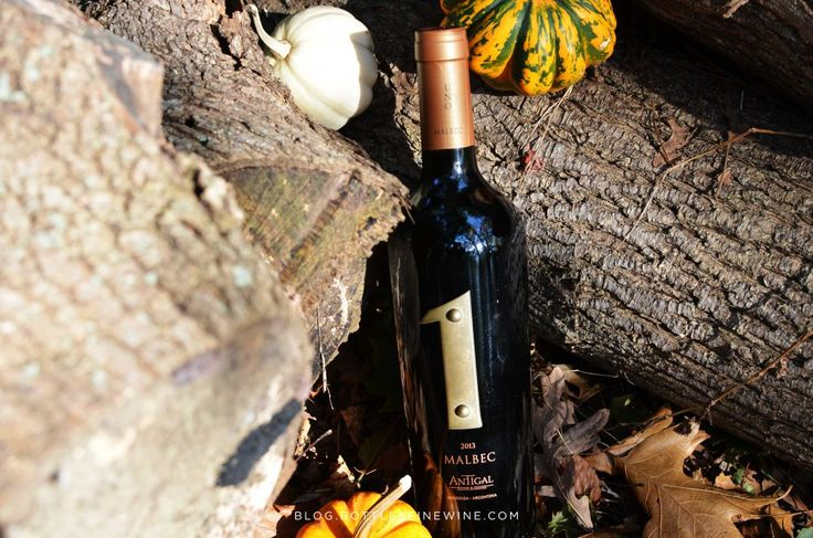 Everyone has opinions about which wines pair best with Thanksgiving dinner. Some say only drink Beaujolais, some dictate pinot noir. Some suggest drinking bubbly wine throughout the entire meal (let's have dinner at their house!), some suggest pairing a different wine with each course. None of the above are wrong, of course. The only wrong …