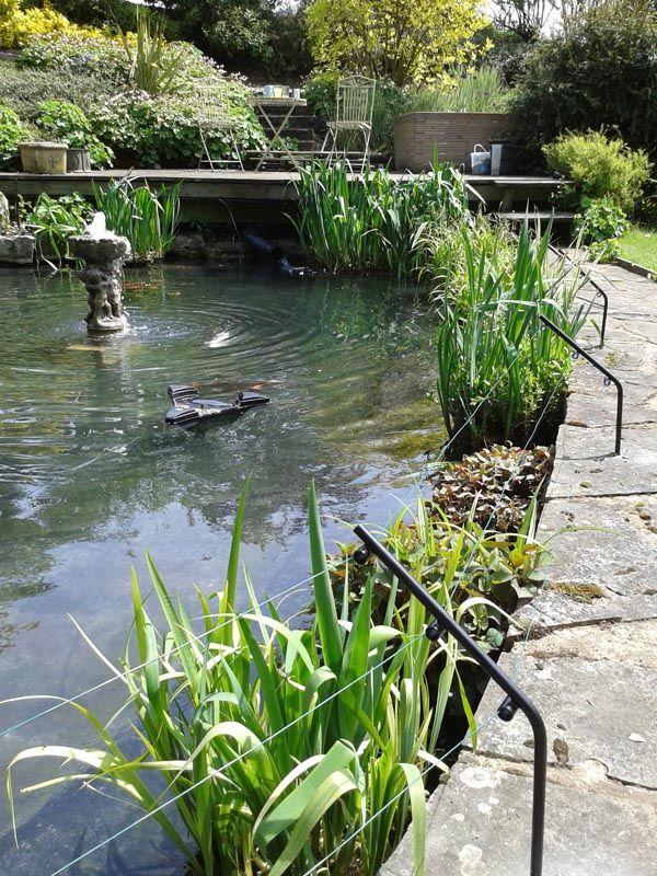 279 Best Ponds Images On Pinterest Landscaping Ponds