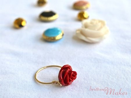 Adorable rings