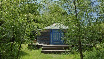 birch-yurt-anglesey-tipi-and-yurt-holidays