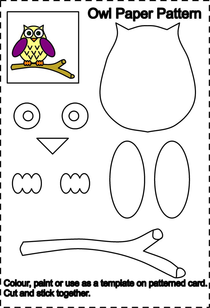 Owl Colouring Pages   Owl Tracing For Cut Out
