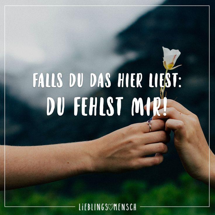 Die Rose ist für dich! ⚘
