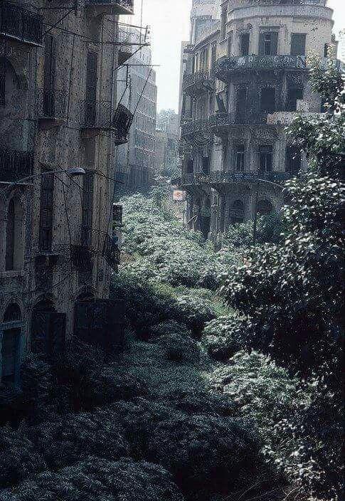 The Green Line demarcation zone, Beirut, Lebanon 1982.