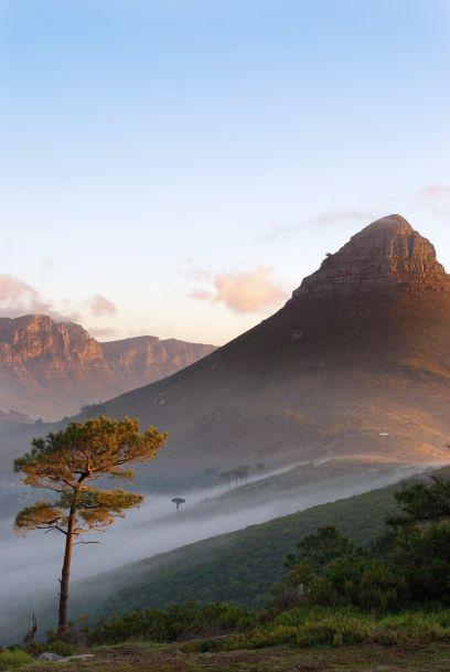 World Travel Awards: Die besten Hotels und Lodges in Südafrika - TRAVELBOOK.de