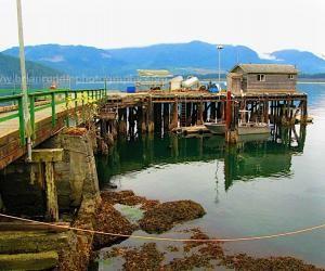 Port Renfrew dock