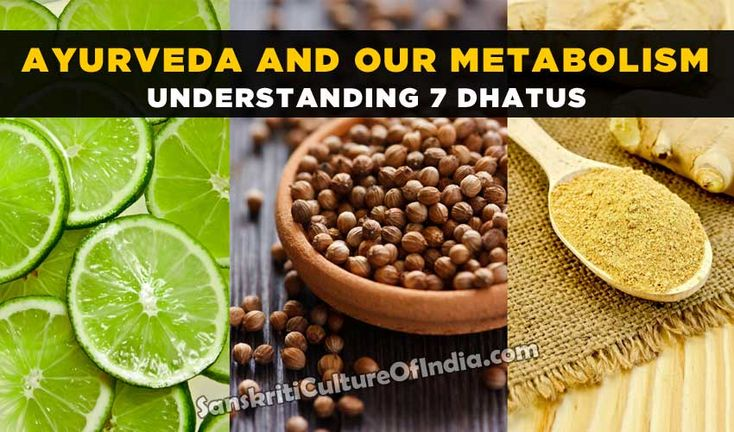 There are 7 Dhatus or Body Tissues that give shape and form to the body. These 7 are Rasa or Rasayana (Tissue Fluids), Rakta (Red Blood Cells), Mansa
