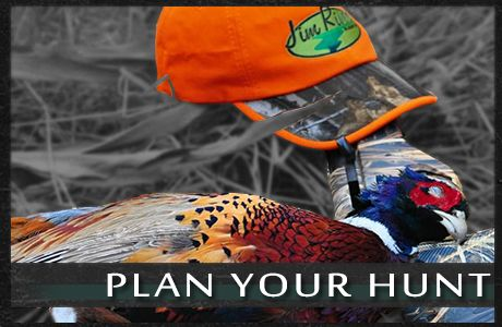 Planning a your South Dakota Pheasant Hunt