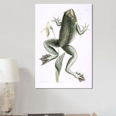 East Urban Home Catesby's Natural History Series 'Bull Frog & Lady's Slipper Of Pennsylvania' Painting Print on Canvas Size: