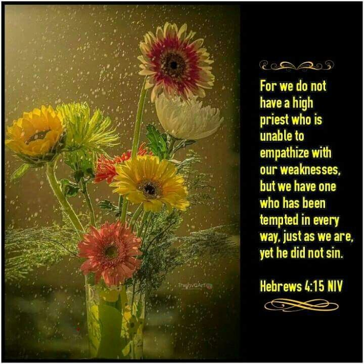 """Growing Deep With Christ's """"For we do not have a high priest who is unable to empathize with our weaknesses, but we have one who has been tempted in every way, just as we are—yet he did not sin."""" [Hebrews 4:15] I have never heard anyone say, """"The really deep lessons of my life have come through times of ease and comfort."""" But I have heard strong saints say, """"Every significant advance I have ever made in grasping the depths of God's love and growing deep with him, has come through sufferi..."""
