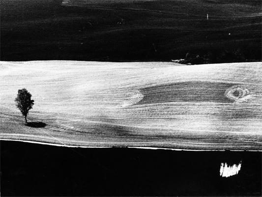[ Graphic Tonality ] Campagna 1977, Mario Giacomelli