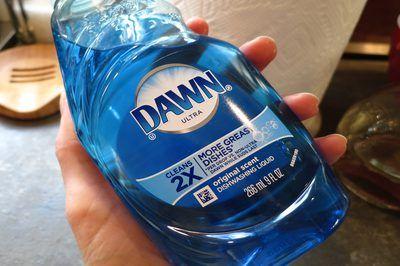 Top 25 Best Blue Dawn Vinegar Ideas On Pinterest Dawn