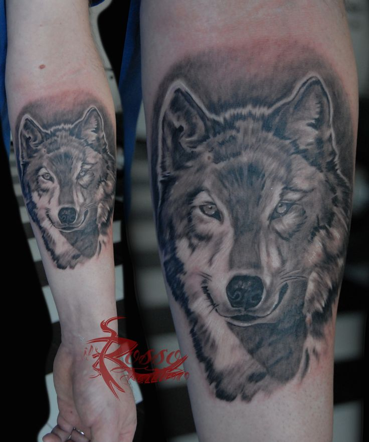 realistic wolf tattoo in black and grey style