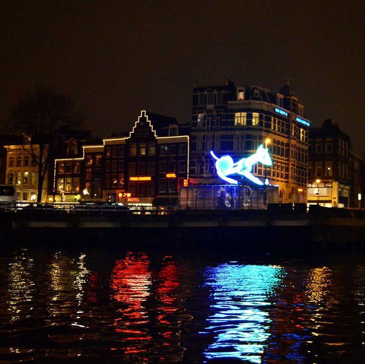 Amsterdam Light Festival: Wolfert's Dog  by Tatiana Titova.